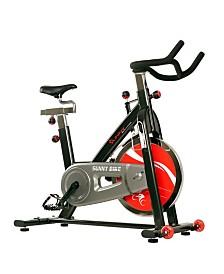 Sunny Health and Fitness SF-B1002C Chain Drive Indoor Cycling Bike