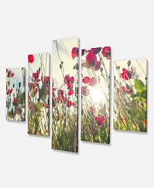 "Designart Poppy Flowers On Summer Meadow Floral Canvas Art Print - 60"" X 32"" - 5 Panels"