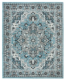 Safavieh Skyler Blue and Ivory 8' x 10' Area Rug