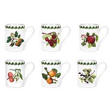 Portmeirion Pomona Tankard Coffee Mug, Assorted Set/6