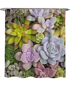 Avanti Succulents Shower Curtain