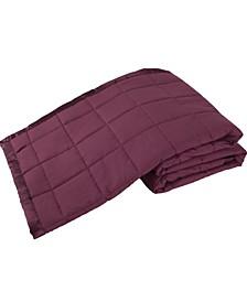 Down Alternative Solid Twin Blanket