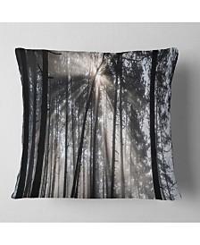 "Designart 'Sunbeams Through Black White Forest' Forest Throw Pillow - 16"" x 16"""
