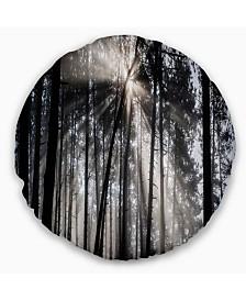 "Designart 'Sunbeams Through Black White Forest' Forest Throw Pillow - 20"" Round"