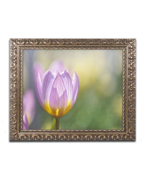 "Trademark Global Cora Niele 'Tulip Lilac Wonder' Ornate Framed Art - 14"" x 11"" x 0.5"""