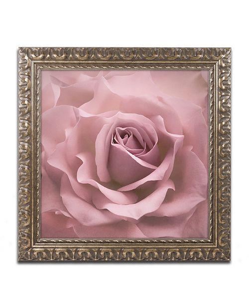 "Trademark Global Cora Niele 'Misty Rose Pink Rose' Ornate Framed Art - 16"" x 16"" x 0.5"""
