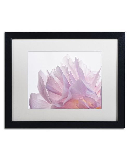 "Trademark Global Cora Niele 'Pink Peony Petals VI' Matted Framed Art - 16"" x 20"" x 0.5"""
