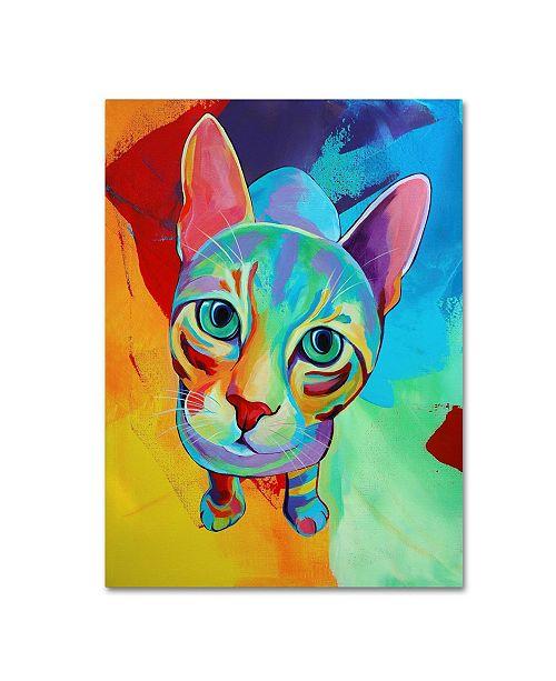 "Trademark Global Corina St. Martin 'Ace Cat' Canvas Art - 24"" x 18"" x 2"""