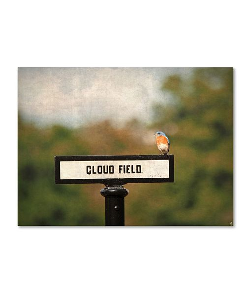 "Trademark Global Jai Johnson 'Bluebird At Cloud Field' Canvas Art - 24"" x 18"" x 2"""