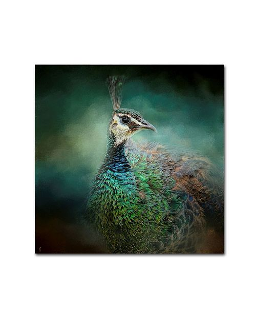 "Trademark Global Jai Johnson 'Peacock 12' Canvas Art - 24"" x 24"" x 2"""