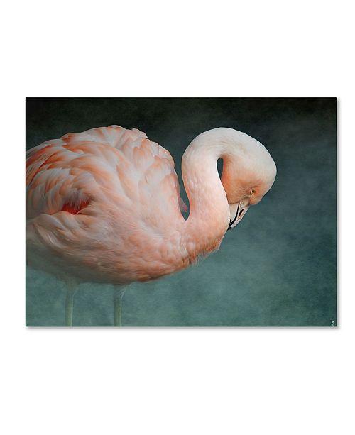 "Trademark Global Jai Johnson 'Pink Flamingo 2' Canvas Art - 24"" x 18"" x 2"""
