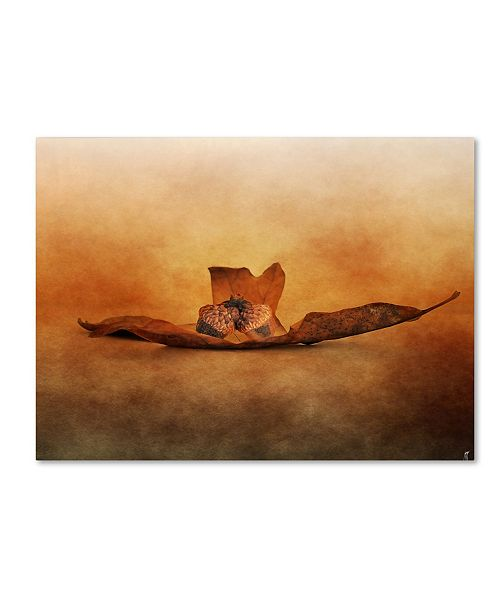 "Trademark Global Jai Johnson 'Fallen Together' Canvas Art - 24"" x 18"" x 2"""