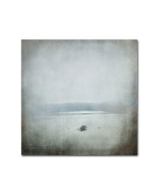 "Trademark Global Jai Johnson 'Foggy River' Canvas Art - 24"" x 24"" x 2"""