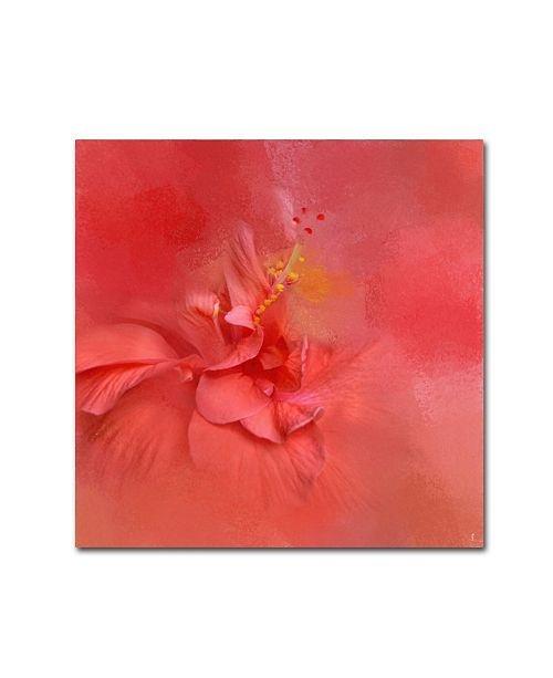 "Trademark Global Jai Johnson 'Salmon Hibiscus 2' Canvas Art - 18"" x 18"" x 2"""