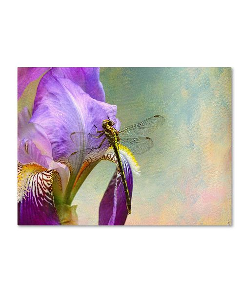 "Trademark Global Jai Johnson 'Say Hello To Spring' Canvas Art - 47"" x 35"" x 2"""