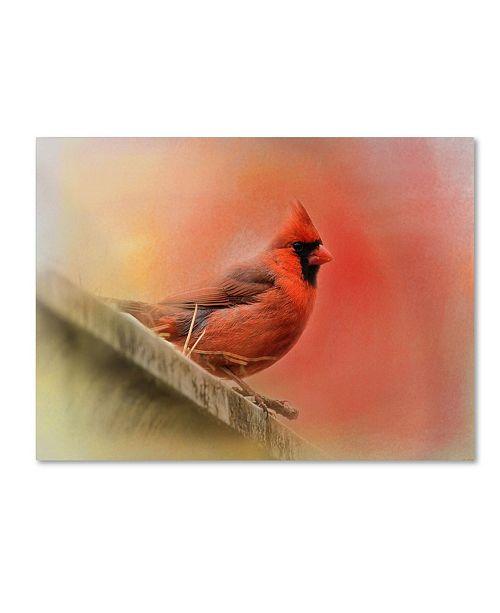 "Trademark Global Jai Johnson 'Rooftop Visitor Cardinal' Canvas Art - 32"" x 24"" x 2"""