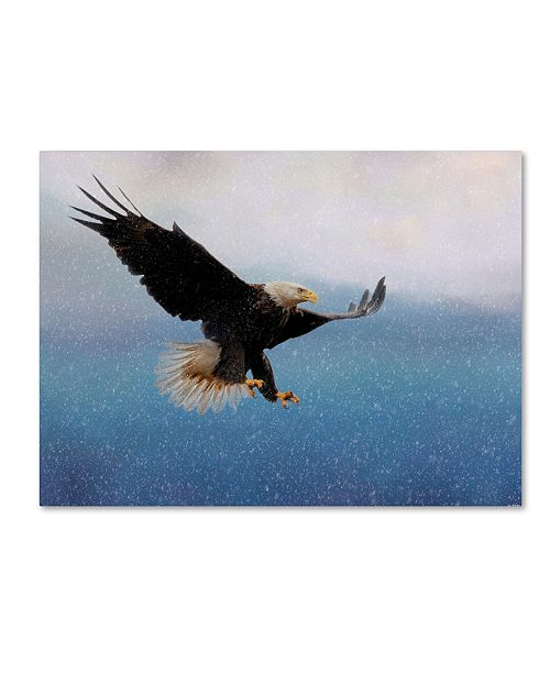 "Trademark Global Jai Johnson 'Snowy Flight Bald Eagle' Canvas Art - 47"" x 35"" x 2"""