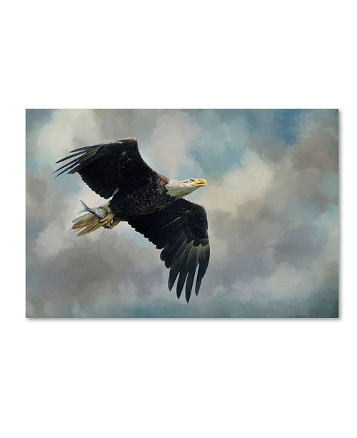 "Trademark Global Jai Johnson 'Fish In The Talons' Canvas Art - 19"" x 12"" x 2"""