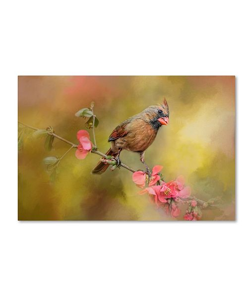 "Trademark Global Jai Johnson 'Spring Cardinal 1' Canvas Art - 32"" x 22"" x 2"""
