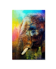 "Jai Johnson 'Colorful Expressions Elephant' Canvas Art - 47"" x 30"" x 2"""