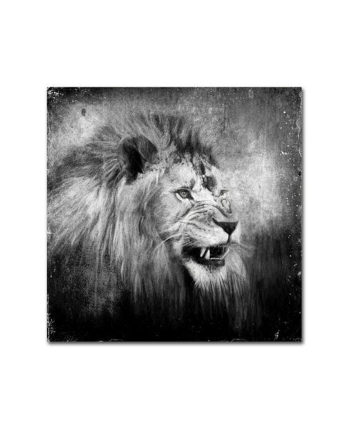 "Trademark Global Jai Johnson 'Snarling In Black And White' Canvas Art - 24"" x 24"" x 2"""