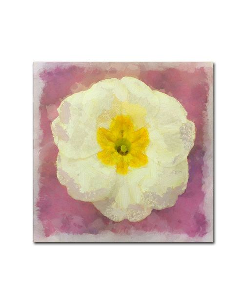 "Trademark Global Cora Niele 'Primrose White' Canvas Art - 18"" x 18"" x 2"""
