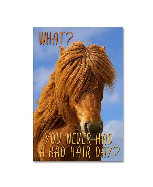 "Trademark Global Cora Niele 'Bad Hair Day' Canvas Art - 19"" x 12"" x 2"""