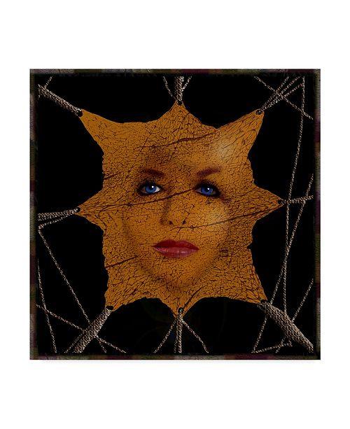"Trademark Global Dana Brett Munach 'Vanity' Canvas Art - 35"" x 35"" x 2"""