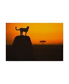 """Faisal Alnomas 'Watcher' Canvas Art - 32"""" x 22"""" x 2"""""""