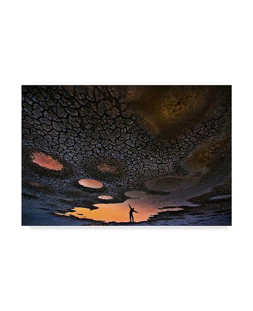 "Trademark Global Daniel Winter 'Dream Of Flying' Canvas Art - 32"" x 2"" x 22"""