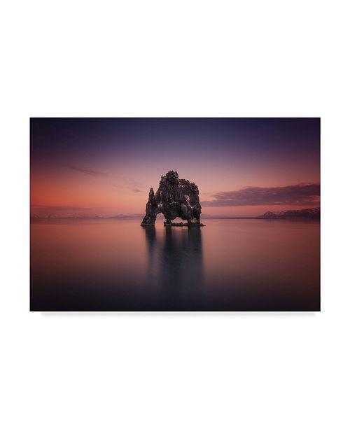 "Trademark Global David Martin Castan 'Rhino Cliff' Canvas Art - 24"" x 2"" x 16"""