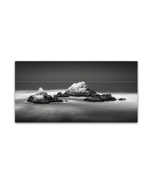 "Trademark Global Dave MacVicar 'Seal Rocks' Canvas Art - 47"" x 24"" x 2"""