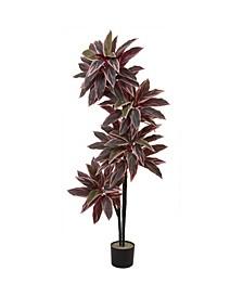 """54"""" Caladium Silk Plant"""