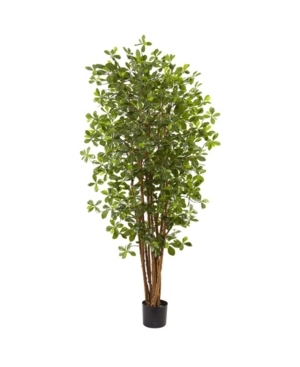 Nearly Natural 6' Black Olive Silk Tree