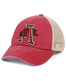 Arkansas Razorbacks Raggs Alternate Mesh Cap