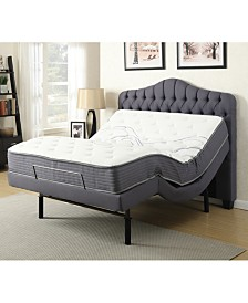 Primo International Gemma Metal Adjustable Bed- Queen