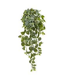 "Nearly Natural 36"" Fittonia Hanging Bush Artificial Plant (Set of 2) (Real Touch)"