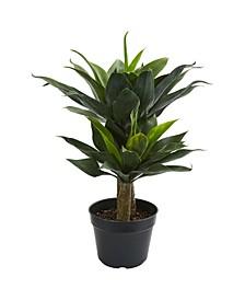 """29"""" Double Agave Succulent Artificial Plant"""