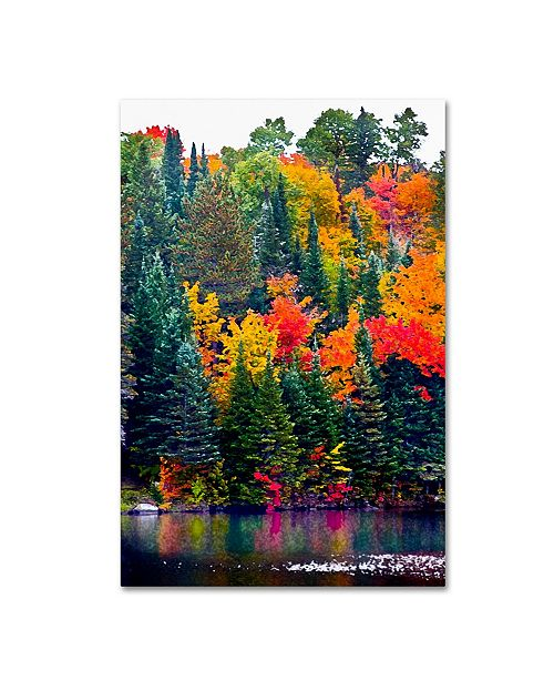 "Trademark Global The Lieberman Collection 'Lake 2' Canvas Art - 47"" x 30"" x 2"""