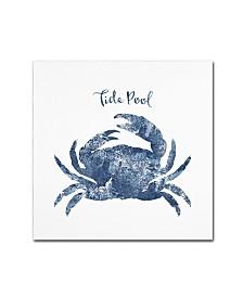 "Tina Lavoie 'Tide Pool Crab' Canvas Art - 14"" x 14"" x 2"""