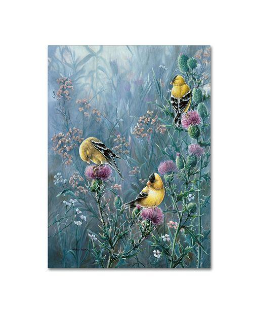 "Trademark Global Wanda Mumm 'Summer Gold' Canvas Art - 32"" x 24"" x 2"""