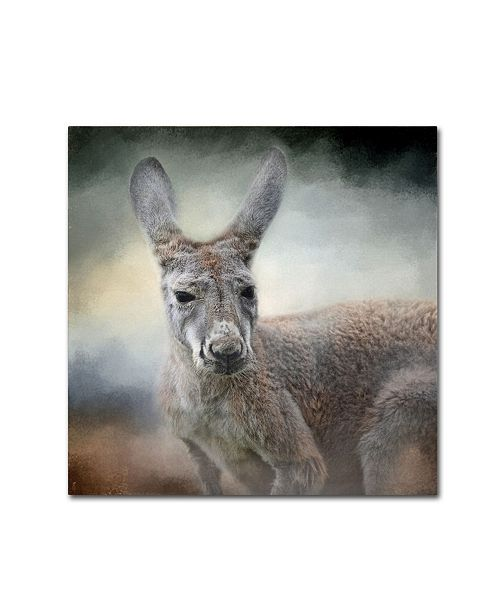 "Trademark Global Jai Johnson 'Western Grey Kangaroo' Canvas Art - 24"" x 24"" x 2"""