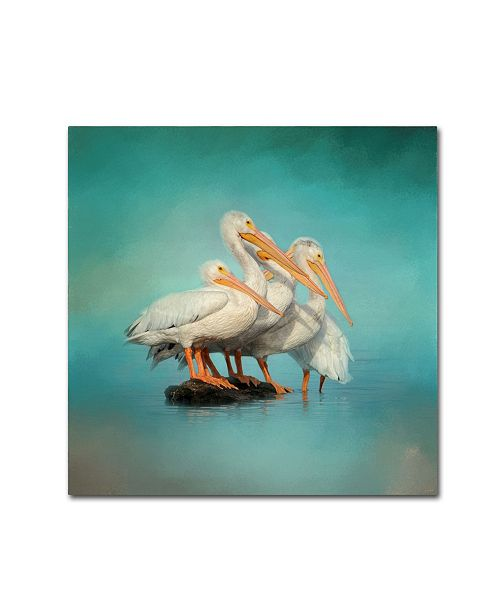 "Trademark Global Jai Johnson 'We Are Family White Pelicans' Canvas Art - 18"" x 18"" x 2"""