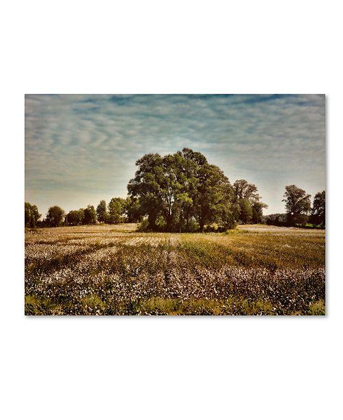 "Trademark Global Jai Johnson 'Trees In The Cotton Field' Canvas Art - 19"" x 14"" x 2"""