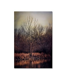 "Jai Johnson 'Warm Winter Peace' Canvas Art - 32"" x 22"" x 2"""