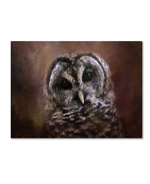 """Trademark Global Jai Johnson 'The Curious Owl' Canvas Art - 24"""" x 18"""" x 2"""""""