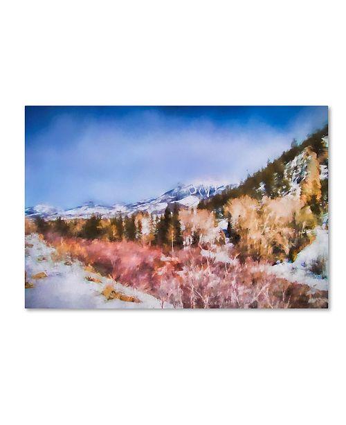 "Trademark Global Jai Johnson 'Winter Beginnings In Colorado' Canvas Art - 19"" x 12"" x 2"""