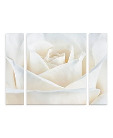 "Cora Niele 'Pure White Rose' Multi Panel Art Set Large - 30"" x 41"" x 2"""