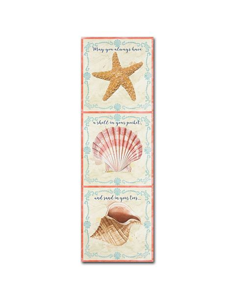 "Trademark Global Jean Plout 'Sea Shells 5' Canvas Art - 24"" x 8"" x 2"""