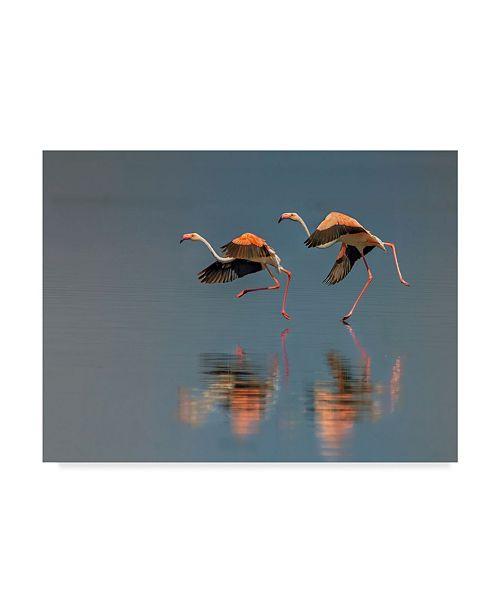 "Trademark Global Yun Wang 'Flamingo Landing' Canvas Art - 32"" x 24"" x 2"""